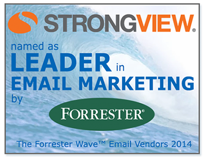 StrongView named Leader by Forrester Research